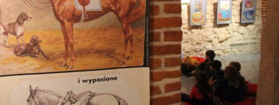 """Wystawa """"Koń jaki jest"""""""